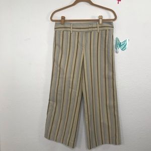 J Crew Size 4 Chico Stripped Pants